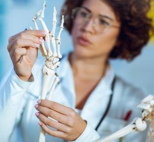 Medizinerin untersucht die Handknochen eines menschlichen Skeletts