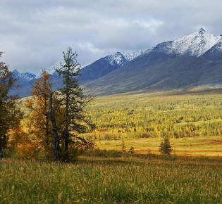 Yugyd-Va-Nationalpark im Ural