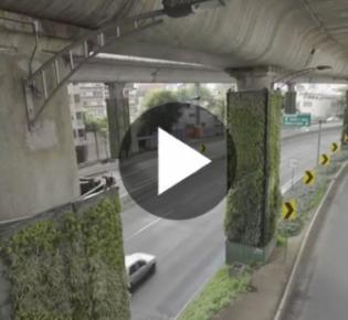Stadtautobahn im Mexiko-Stadt mit begrünten Pfeilern