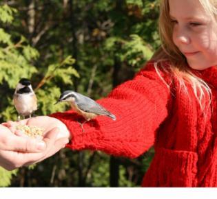 Mädchen beim Vogelfüttern
