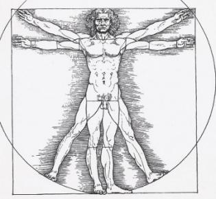 Freigestellte Ansicht des vitruvianischen Menschen nach Leonardo da Vinci