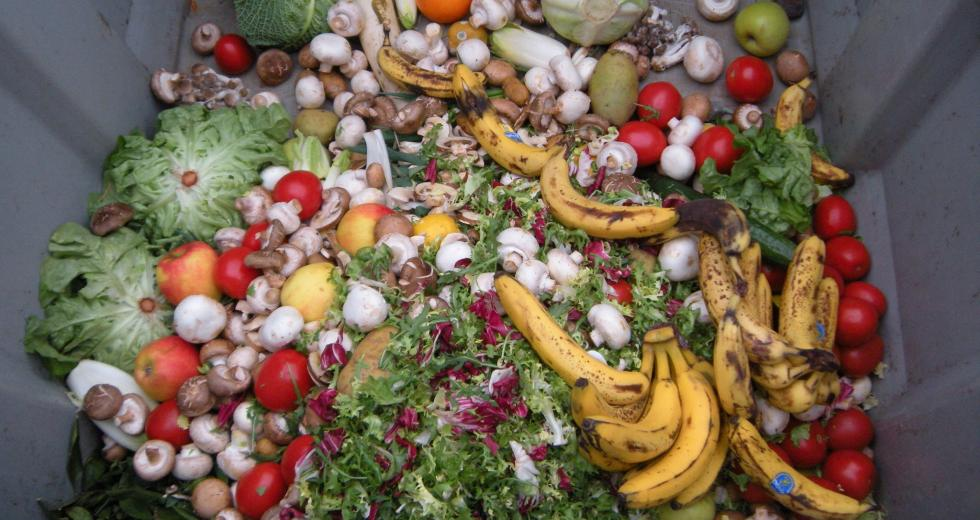 Weggeworfene Lebensmittel in einem Müllcontainer
