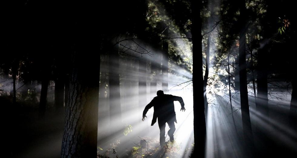 Monster im Walde