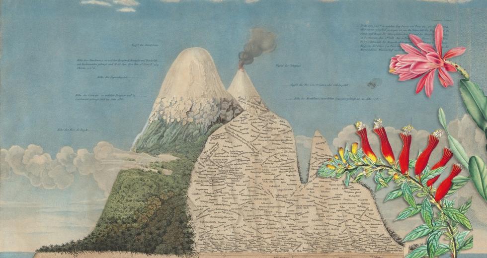 Illustrationen aus Werken von Alexander Humboldt