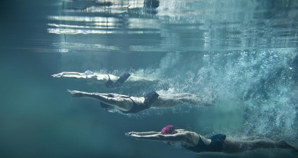 Schwimmerinnen während der Startphase