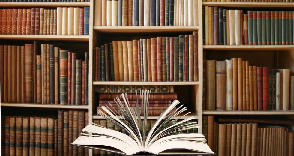 Bücherwand als Symbol klassischer Bildung