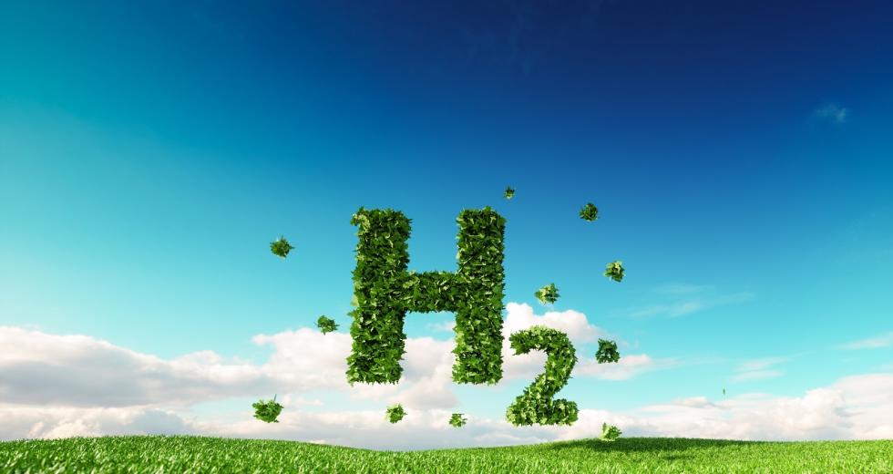 Wasserstoff-Symbol über grüner Wiese