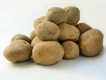 Die Kartoffel sorgt für ...