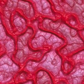 Nanopartikel kommen in die kleinsten Gewebeverästelungen