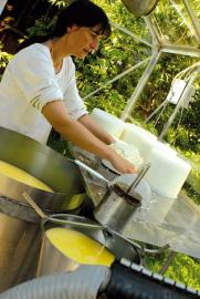 Luise Sunder-Plassmann bei der Herstellung von Frischkäse