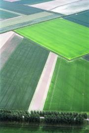 Luftaufnahme Felder