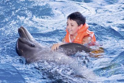 Junge mit Delfin