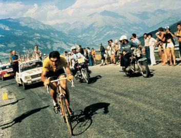 1974 / Merckx / Eddy Merckx