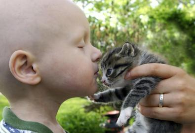 Krebskrankes Kind mit Katze
