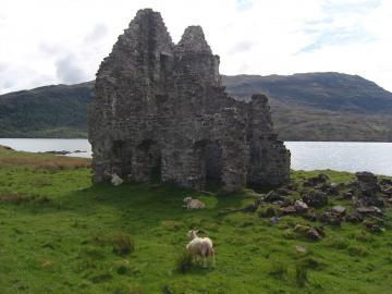 Ruine am Loch Assynt