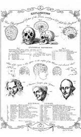 Phrenologie nach Gall