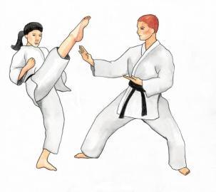 Taekwondo: Kick und Block