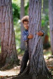 Junge versteckt sich hinter Baum, spielen im Wald