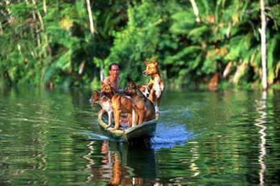 Exotisch: eine Fahrt im Langboot.