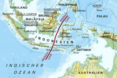 Wallace-Linie zwischen Australien und Asien