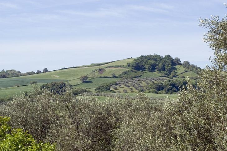 Landschaft bei Capodimonte