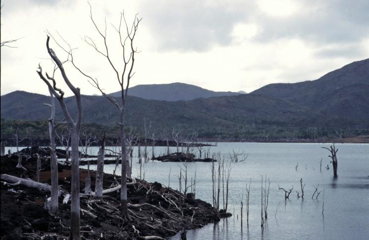 Im Süden der Grande Terre (Große Erde), Neukaledonien