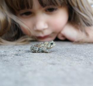 Mädchen mit einem Frosch