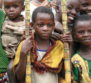 Kongo-Flüchtlinge, 2008