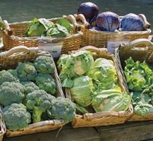 Gemüse an einem Verkaufstand