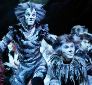 Lloyd Webber: Musical Cats