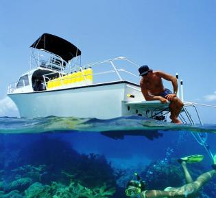 Korallentauchen